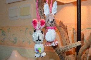 Les lapins de Julie